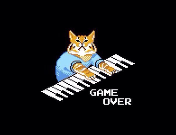 game over cat кот